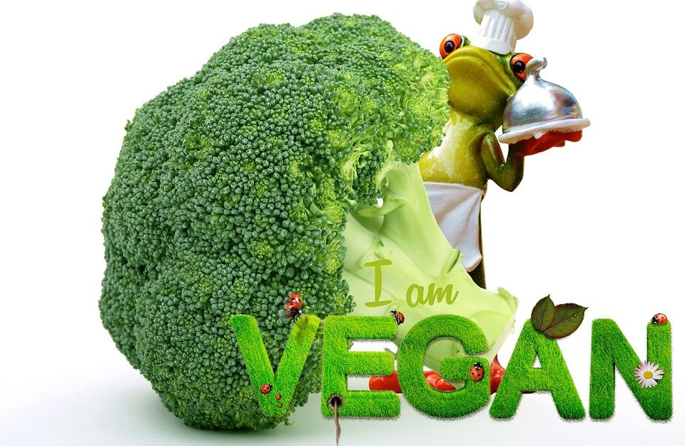 i 10 punti principali di una dieta vegana
