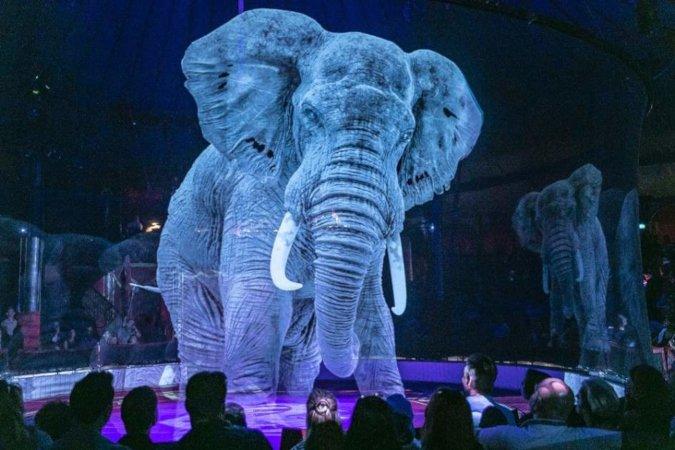 circus roncalli animali 3d
